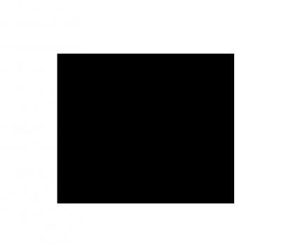 Black Line Entretien